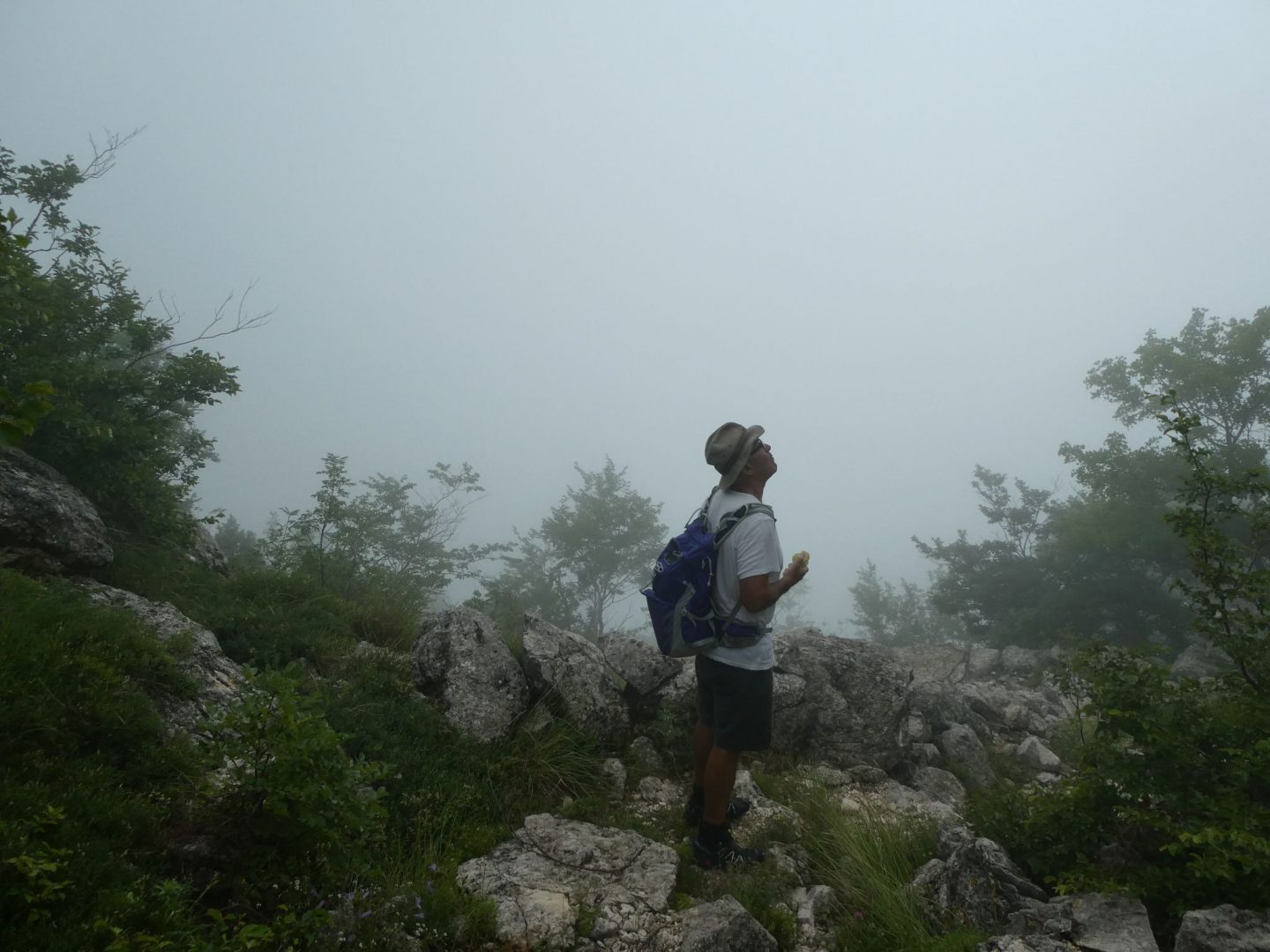 Track the Roots walk, Montenegro (8 to 14 June 2018)