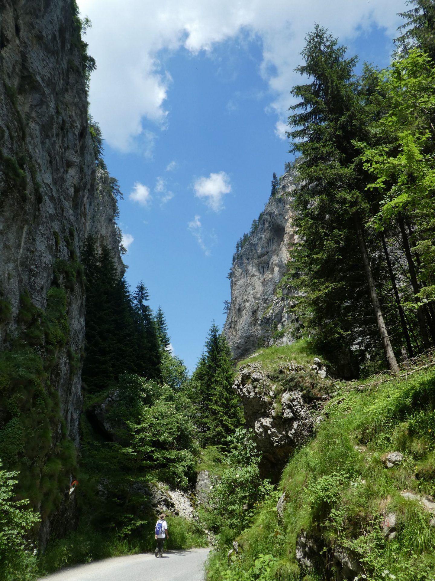 Rhodope Mountains hike (21 to 28 June 2019)