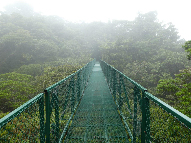 Monteverde (Santa Elena) (18 to 21 November 2019)