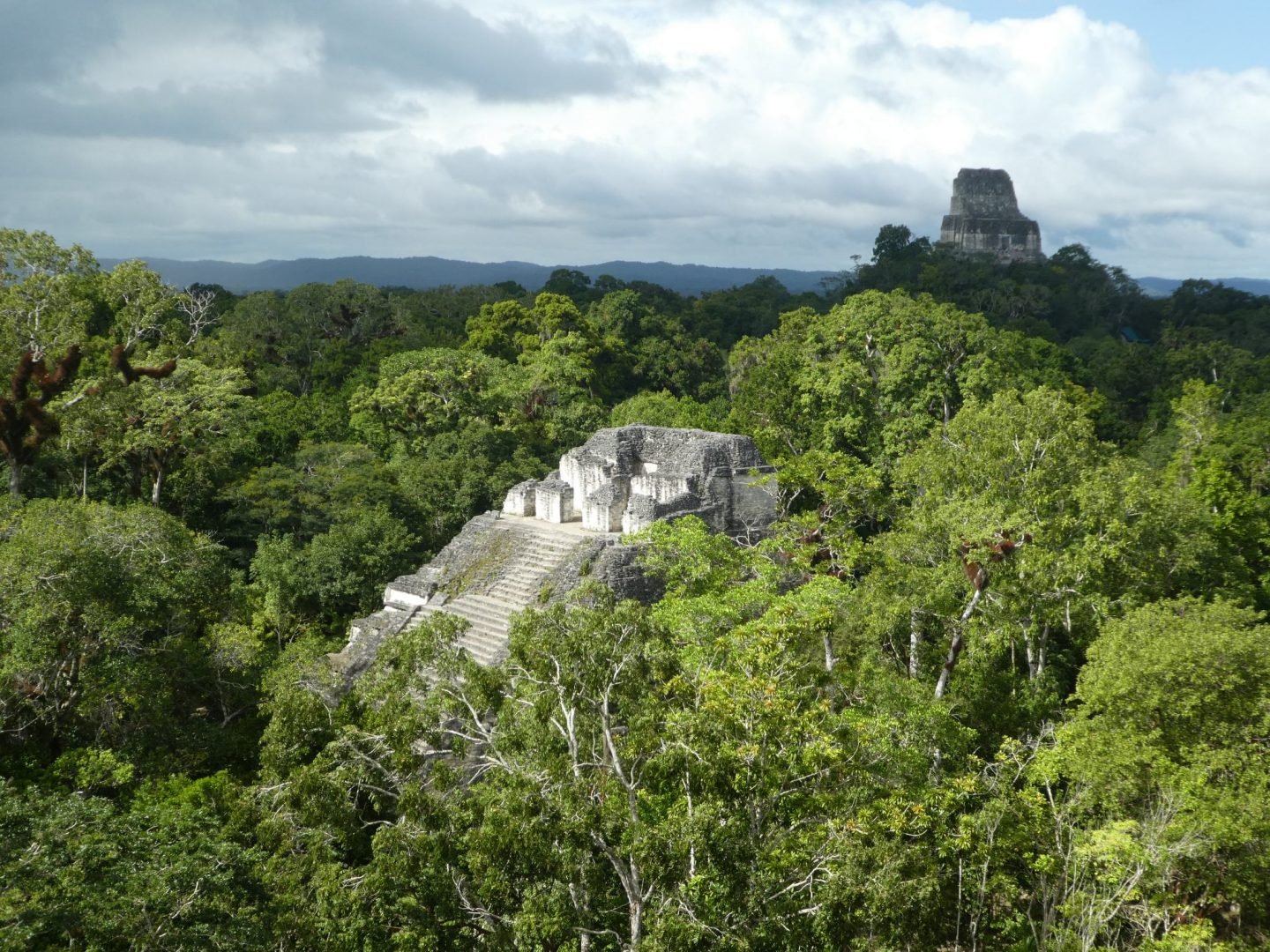 Tikal (8 to 10 January 2020)